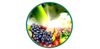 Fruits & Greens™